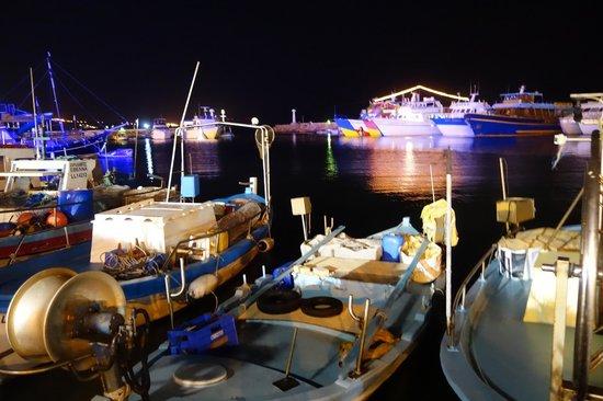 Vassos Psarolimano: Вид на рыбацкие лодки