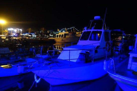 Vassos Psarolimano: Лодки в порту
