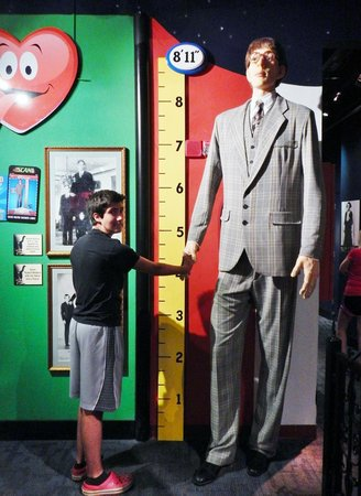 shaking hands with the tallest man that ever lived picture of