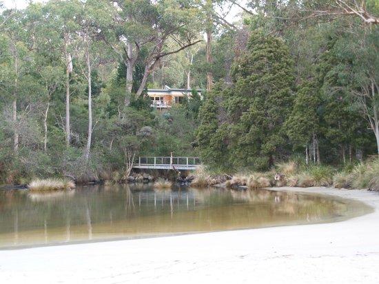 Stewarts Bay Lodge: Cabins