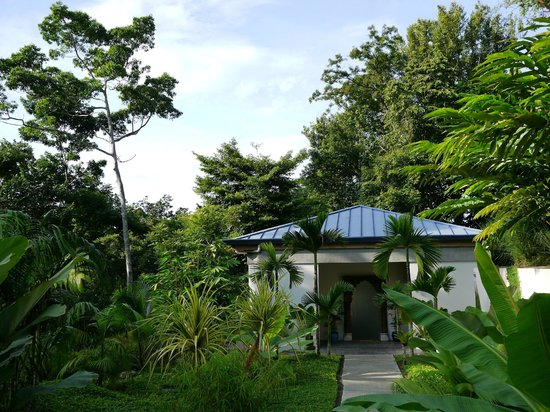 Prana Rainforest Retreat : View of the guest house from the driveway