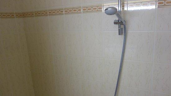 Savoy Hotel Evian : La douche ??