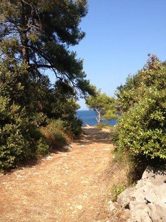 Lastovo: mooi weggetje naar strand