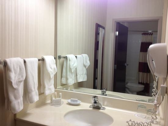 SpringHill Suites Minneapolis-St. Paul Airport/Eagan : vanity