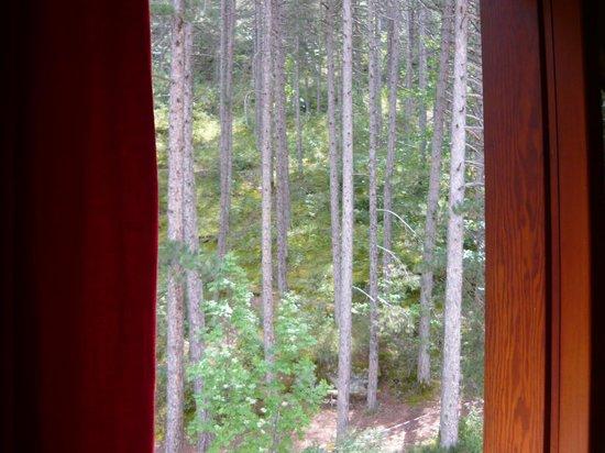 Hotel Garni' Millepini: La vista dalla camera