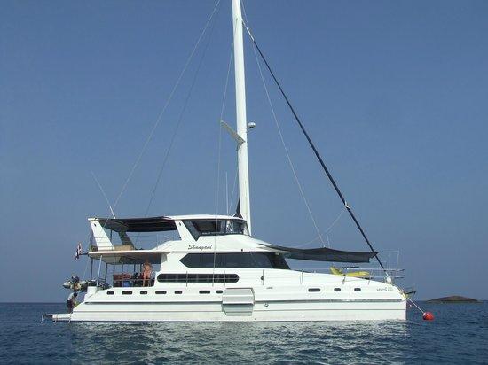 Tiger Marine Charter: Fantastic day cruise on Shangani