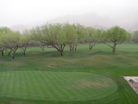 Lodge at Ventana Canyon: View from room of 1st Fairway