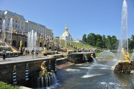 Tour De Force Travel - Day Tours: Peterhof Palace Grounds