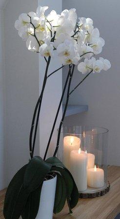 dans ma bulle massages deauville 2018 ce qu 39 il faut savoir pour votre visite tripadvisor. Black Bedroom Furniture Sets. Home Design Ideas