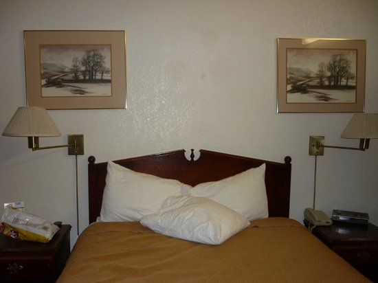 Paso Robles Travelodge: Bed
