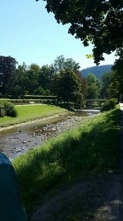 Baden-Baden Kur & Tourismus: this is from Emirate Family .. we enjoyed the fabulous views and flowers