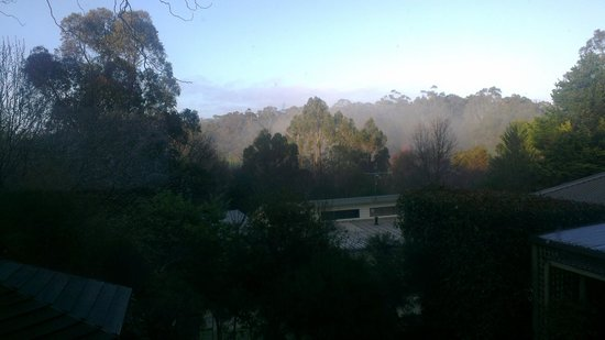 Birches of Daylesford: View from lounge