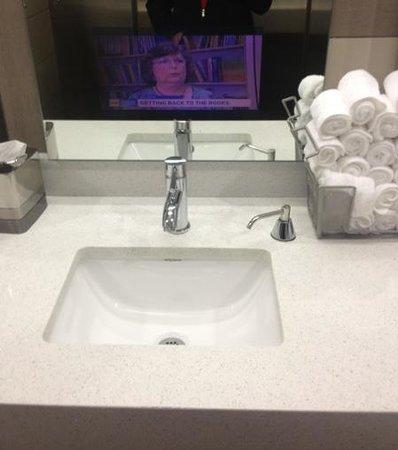 Hampton Inn & Suites Denver Downtown-Convention Center: Lobby bathroom