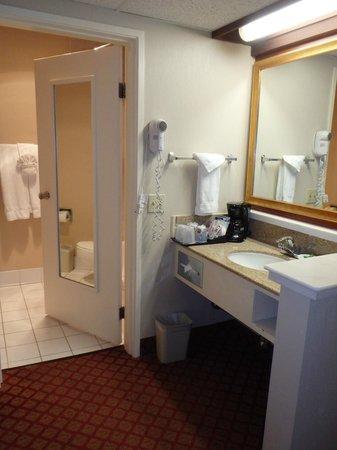 Holiday Inn Express Solvang: bathroom sink area
