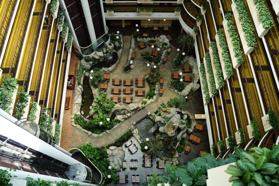 Embassy Suites by Hilton Anaheim - South : The view from your room's front door
