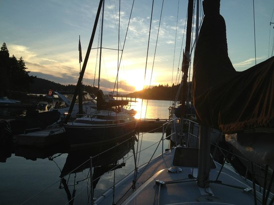 Sunshine Coast Resort Hotel & Marina : Sunset from the Marina
