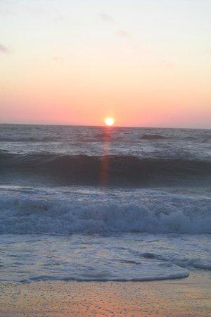 Monterey Beach Dunes Inn: Marina beach