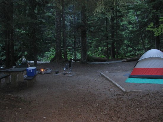 Denny Creek Campground : Campsite 10