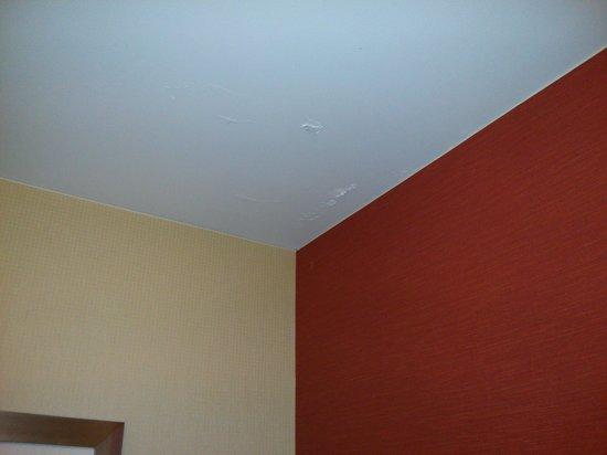 Courtyard Greenbelt: Bathroom ceiling