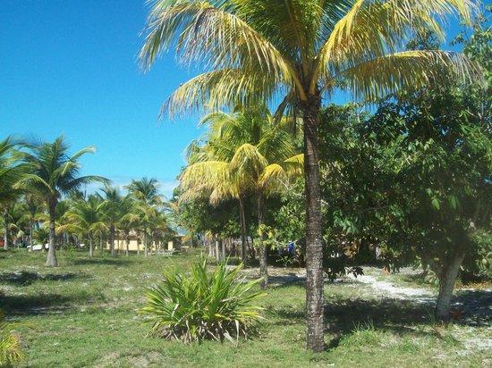 Pousada Fazenda Amendoeira : Área externa