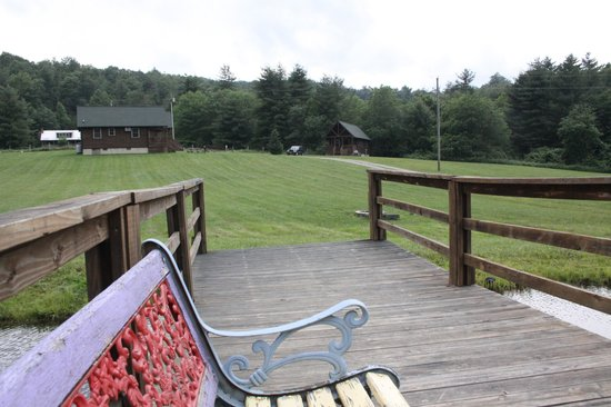 View from the dock picture of cabins on laurel creek for Laurel springs