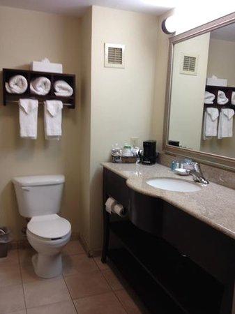 Hampton Inn Brattleboro : So neat and clean!