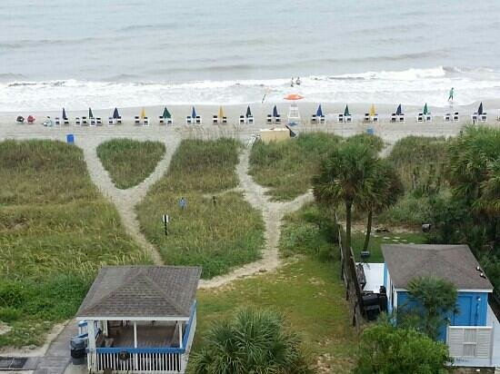 Forest Dunes Resort : Beautiful view and beach access.