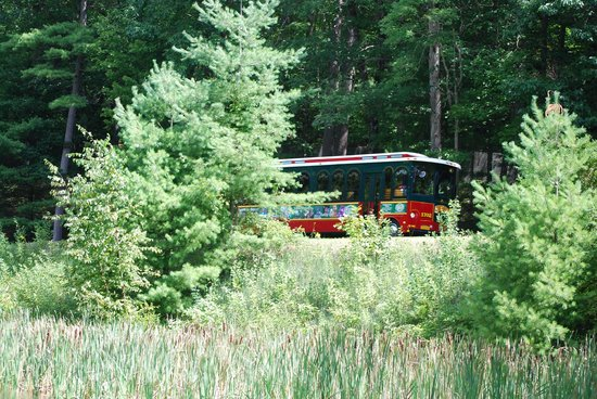Lake George RV Park: Trolly going around the park
