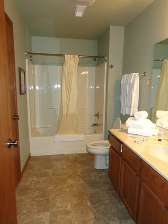 Wild Eagle Lodge : One of two bathrooms