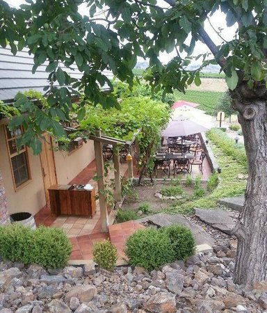 Terrafina at Hester Creek by RauDZ: Grape arbor patio viewed from walk to Winery.