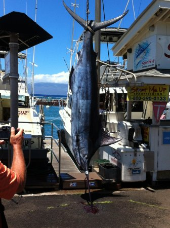 Start Me Up, Sport Fishing : Trip of a lifetime