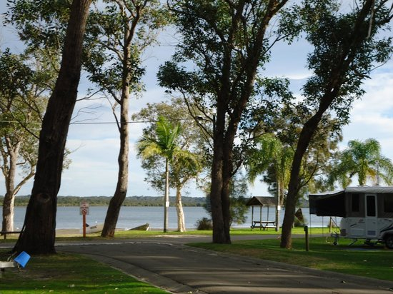 BIG4 Koala Shores Port Stephens Holiday Park : The view from our caravan site.