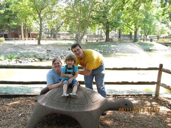 Henson Robinson Zoo: Sittin on the turtle