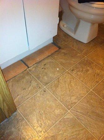 Golden Village Lodge: dirty peeling floor