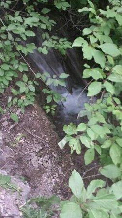 Mill Creek Canyon: cascade