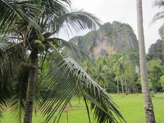 Railay Village Resort: Umgebung