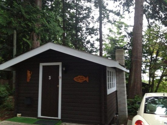 Catch of the Day Cottages: Cabin 3
