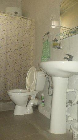 Hotel Nairi: Washroom
