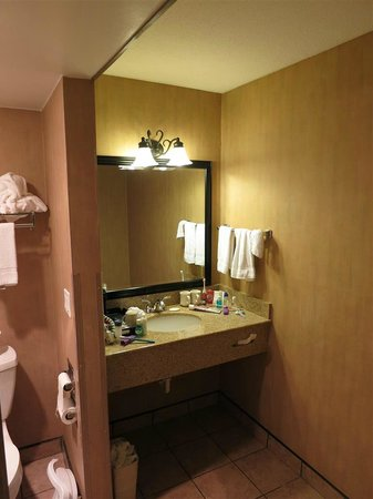 Comfort Inn & Suites : sink area