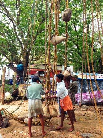 Kashi Art Gallery : Chinese fishing nets