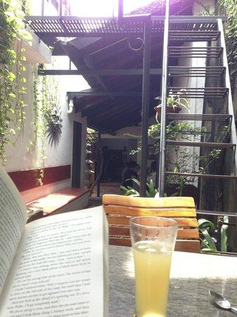 Kashi Art Gallery : Sipping a ginger lemonade in Kashi Art Cafe