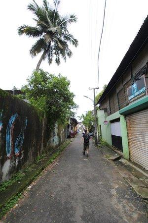 Kashi Art Gallery: The lane