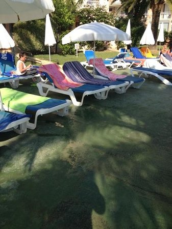 Aparthotel THB Sa Coma Platja: more beds reserved same morning