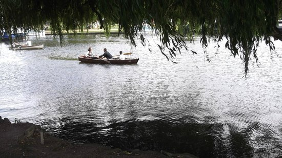 Stratford-upon-Avon Canal: A romantic day on the river