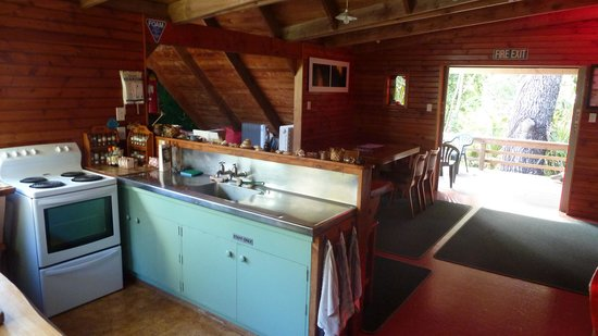 The Tree House: Kitchen
