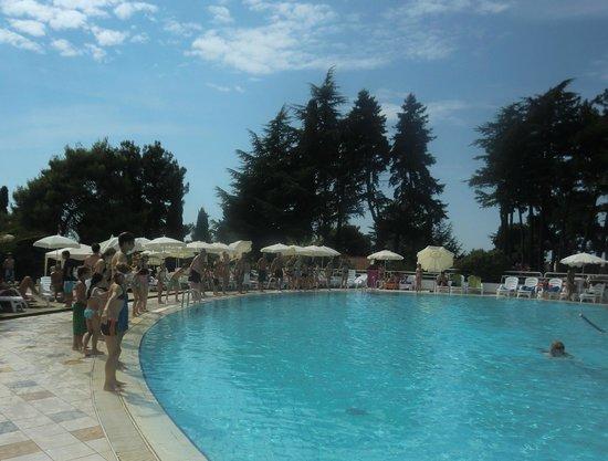 Valamar Pinia Hotel: Animazione pomeridiana