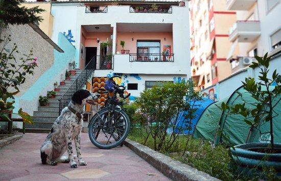 Milingona Hostel: The hostel