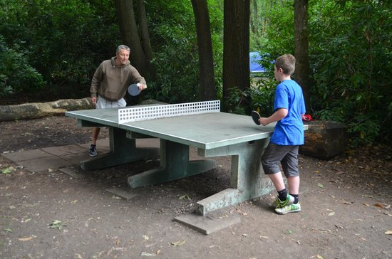Alpine Grove Log Cabins: Outdoor table tennis (great for the older children)