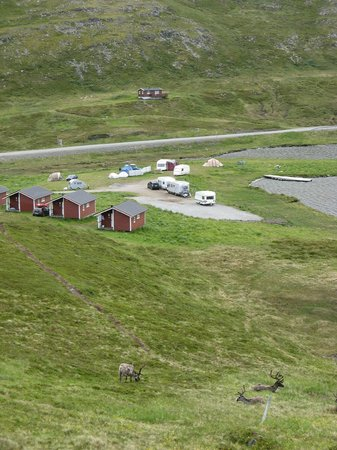 Kirkeporten Camping: View at the campsite