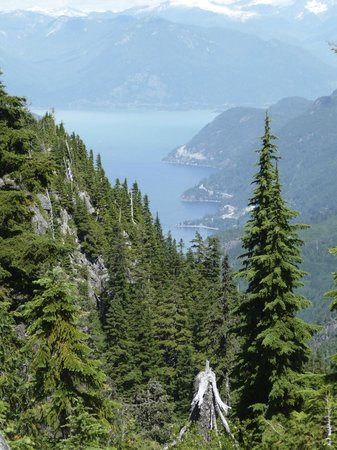 Cypress Provincial Park: View from Trail